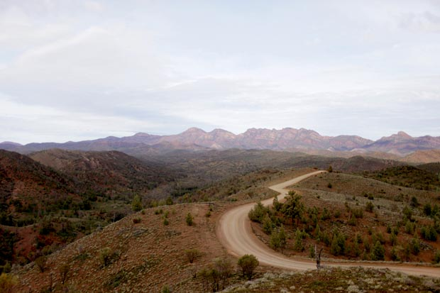 Explore the Flinders Ranges | She Sows Seeds 8