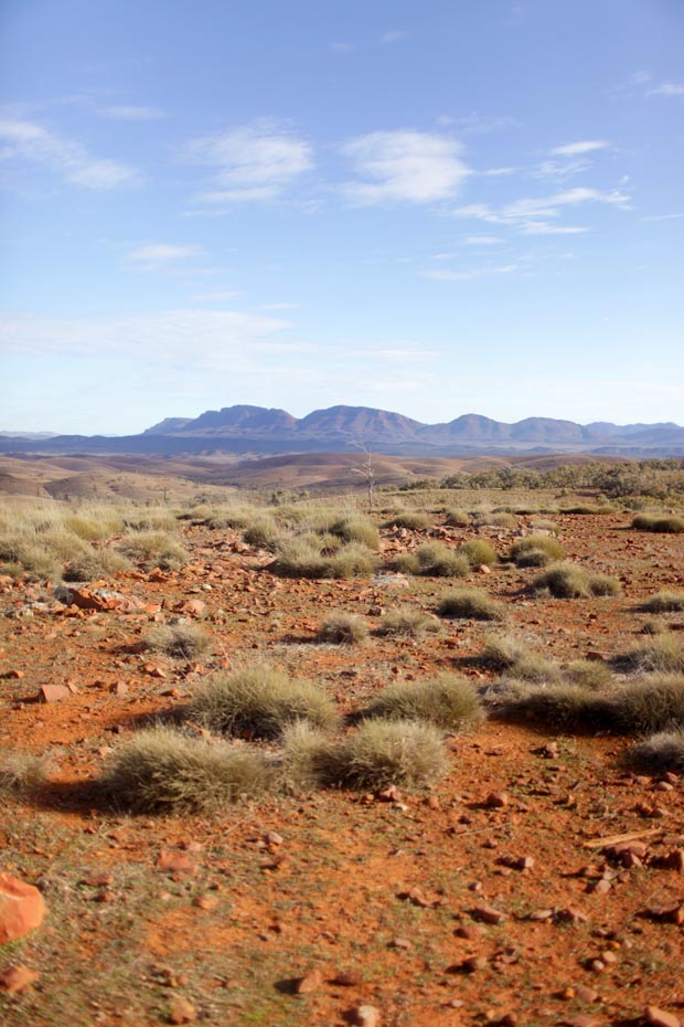 Explore the Flinders Ranges | She Sows Seeds 9