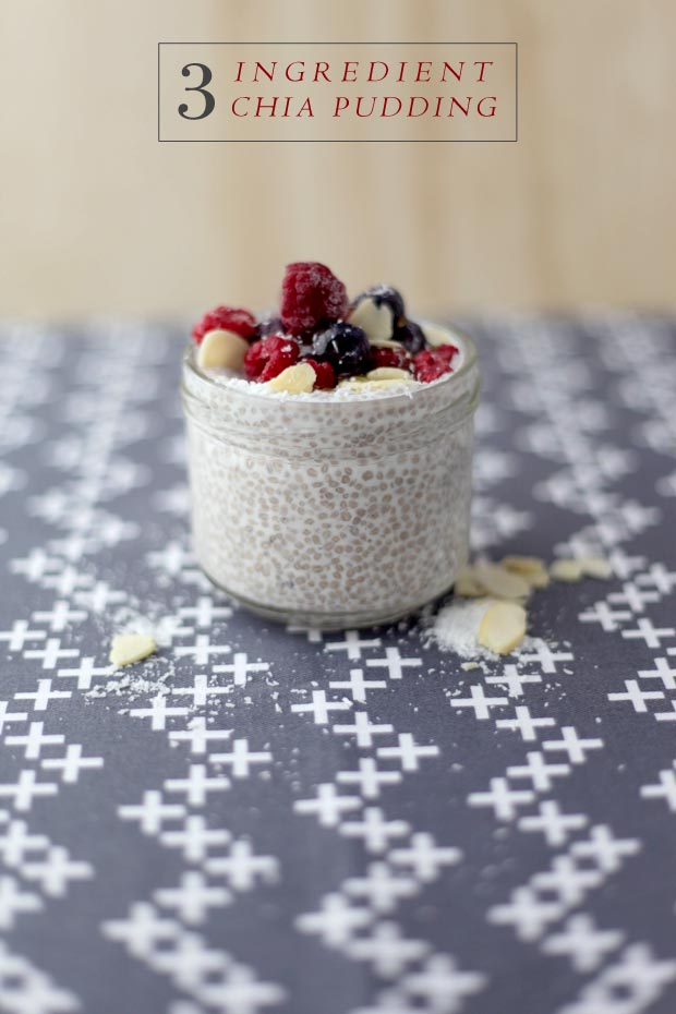 3 Ingredient Chia Pudding | She Sows Seeds