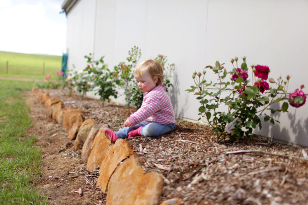 An Arbour and a Rose Garden | She Sows Seeds 10