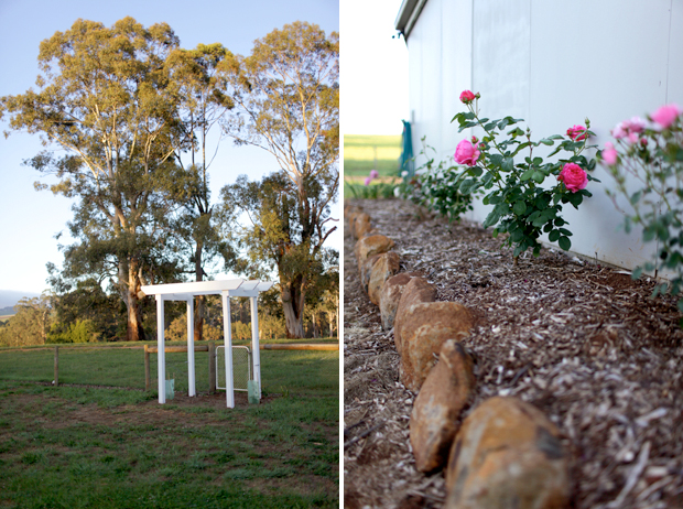 An Arbour and a Rose Garden | She Sows Seeds 14