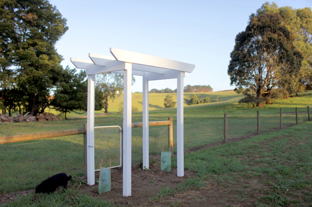 An Arbour and a Rose Garden | She Sows Seeds 3
