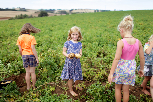 Pizzas and Trains and Spud Digging | She Sows Seeds 26