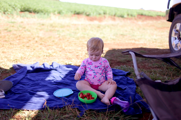 Pizzas and Trains and Spud Digging | She Sows Seeds 27