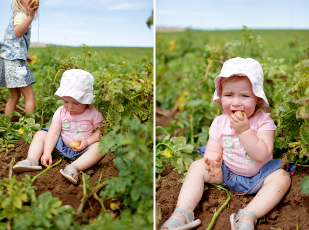 Pizzas and Trains and Spud Digging | She Sows Seeds 31