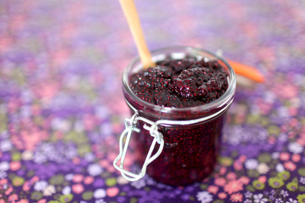 Sugar Free Blueberry and Chia Jam | She Sows Seeds 2