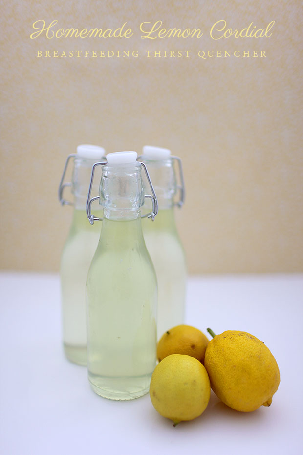 Homemade Lemon Cordial | She Sows Seeds