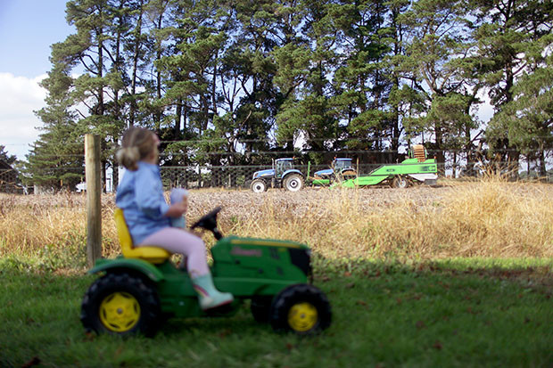 A Harvesting We Will Go   She Sows Seeds