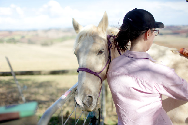 Horsing Around | She Sows Seeds 2