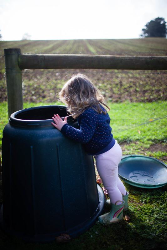 How To Start a Compost Heap | She Sows Seeds 1