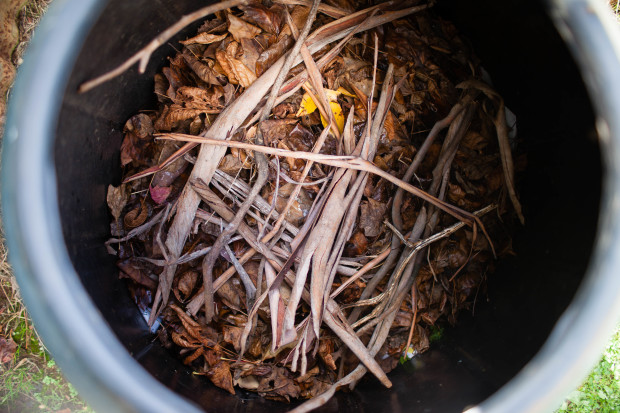 How To Start a Compost Heap | She Sows Seeds 2