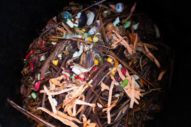 How To Start a Compost Heap | She Sows Seeds 4