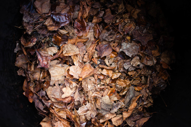 How To Start a Compost Heap   She Sows Seeds 6