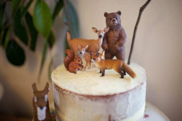 Woodland Party-5677